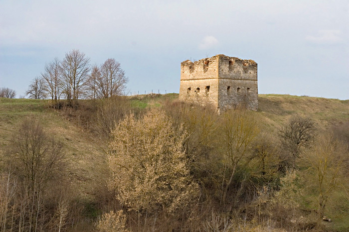 Сутковцы замок