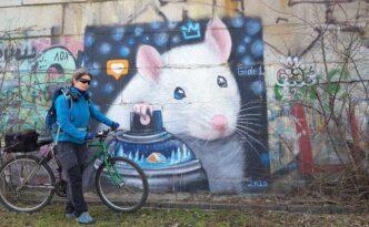 Киев Граффити мышь